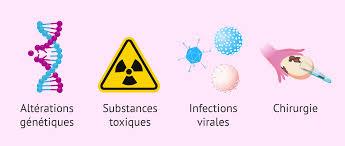 causes ménopause précoce