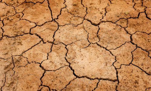 peau sèche ménopause