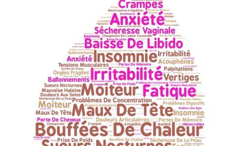 Symptomes Ménopause